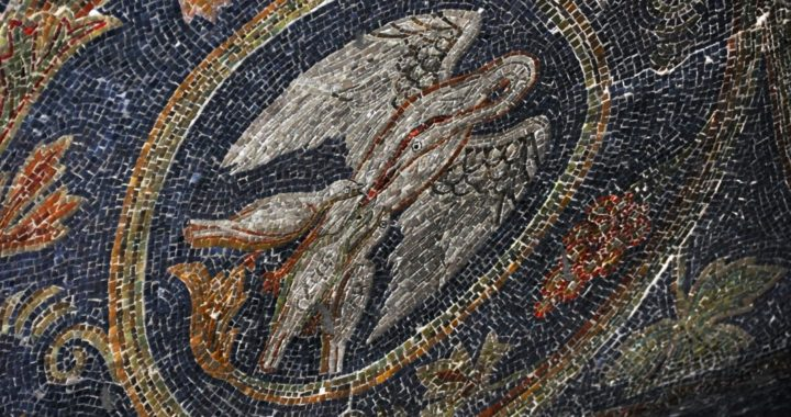Mosaic of a white pelican feeding its young on Calvary Hill, 11th Station of the Cross