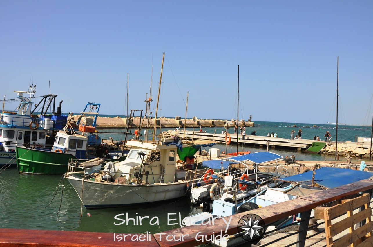Pld Jaffa's historic port with fishing boats